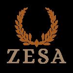 Zesa-Icon
